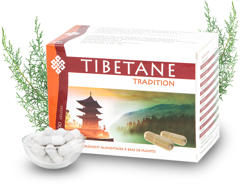 Tibetane tradition